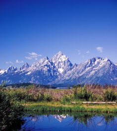 Jackson Hole, one of my favorite summer spots