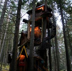 I once dreamed of having a tree house. But this is way better that just a tree house. Its a tree mansion :)) Treehouse Masters, Magic Treehouse, Future House, My House, Cool Tree Houses, Fantasy Forest, Mystical Forest, In The Tree, Christmas Tree Decorations