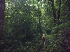 Hiking through jungle in Kalu Yala, Panama