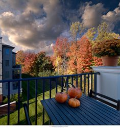 As the cool embrace of Fall continues, there are still lots of things happening at the Athertyn Clubhouse! Athertyn Clubhouse Calendar of Events – November 2017 Fall Crops, October Flowers, Weed Seeds, Daylight Savings Time, October Birth Stone, Resort Style, October 2014, Event Calendar, House Prices