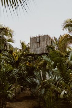 Acre Hotel is a Wedding Venue in San José del Cabo, Baja California Sur, Mexico. See photos and contact Acre Hotel for a tour. Casa Magna, Asheville Glamping, Post Ranch Inn, Building A Treehouse, Outdoor Baths, San Jose Del Cabo, City Restaurants, Geodesic Dome, Baja California