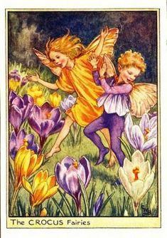 Crocus Flower Fairy » Flower Fairy Prints- Vintage Fairy Prints by Cicely Mary Barker