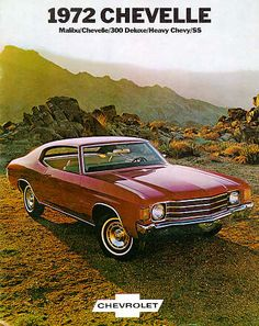 Ours was Gold with half of a Gold Vinyl Roof.  Fun car to drive!