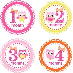 2420 best baby onsie stickers images on pinterest baby month