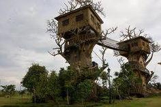 314736_596361650390165_608216245_n.jpg (275×183)  cool tree house