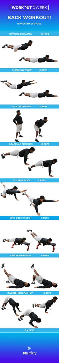 Workout of the Week - Back Exercises #mondaymotivation #motivation #fitness #fit #fitfam #training #workout #workoutoftheweek #exercise #mensfitness #womensfitness #backworkout #backexercise #homeworkout #homeexercise #gym #gymroutine #muscle #strength #reps #sets #toned #toning