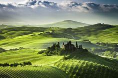 Lever de soleil sur les vignes et les oliviers en Toscane (Gettystock)