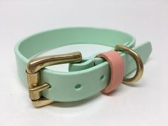 Mint Green Leather Dog Collar