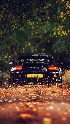 Porsche- Winding of autumn-  ~LadyLuxury~