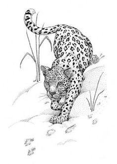 Jaguar Tattoo, Tiger Tattoo, Cat Tattoo, Lion Tattoo, Leopard Tattoos, Snow Leopard Tattoo, Leopard Nails, Tribal Tattoos, Dope Tattoos