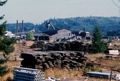 Vernonia Oregon American lumber mill Lumber Mill, Places Of Interest, Old Photos, Oregon, Places To Visit, American, Paper, Roots, Blood