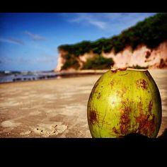 Agua de Coco in Baía dos Golfinhos (Dolfin's Bay)