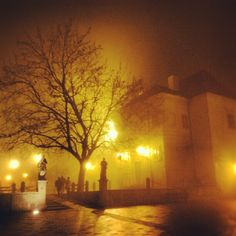 foggy Trnava my old city