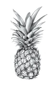 Sibling & Co. Illustrated pineapple. http://society6.com/siblingandco