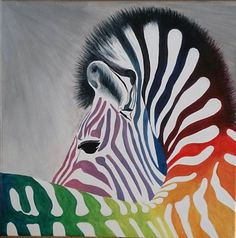 Zebra 2017