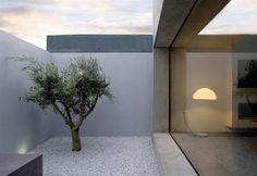 un patio dans la chambre