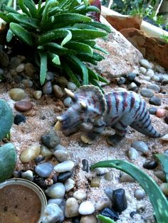 Love the idea of putting little dinosaurs in my garden. This might happen!