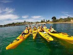 Kayak Tour - Dolphin Sanctuary