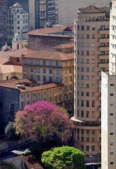 Sao Paulo - (by Carlos Alkmin)