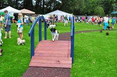Dog park safety tips: http://www.dogtipper.com/tip/2013/06/dog-park-safety-tips.html
