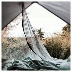 Find The Best Tips For Camping Right Here. You can't deny the natural appeal of the outdoors. If you want to make your next camping trip an experience to remember, you need to get informed. Into The Wild, Trekking, Adventure Awaits, Adventure Travel, Chobe National Park, Photos Voyages, Go Camping, Camping Outdoors, Camping Packing