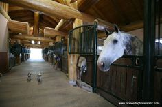 Pioneer Log Homes of British Columbia even a log horse barn! Riding Stables, Horse Stables, Horse Barns, Horses, Dream Stables, Dream Barn, Barn Pictures, Home Pictures, Log Cabin Floor Plans