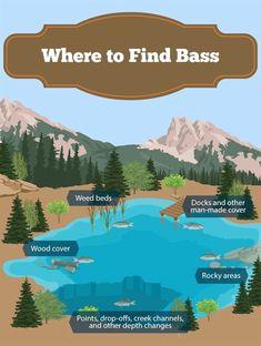 fly fishing tips trout Bass Fishing Lures, Fishing Knots, Best Fishing, Trout Fishing, Kayak Fishing, Fishing Stuff, Fishing Tackle, Saltwater Fishing, Shimano Fishing