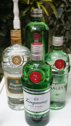 Tanqueray Ginsstandbys