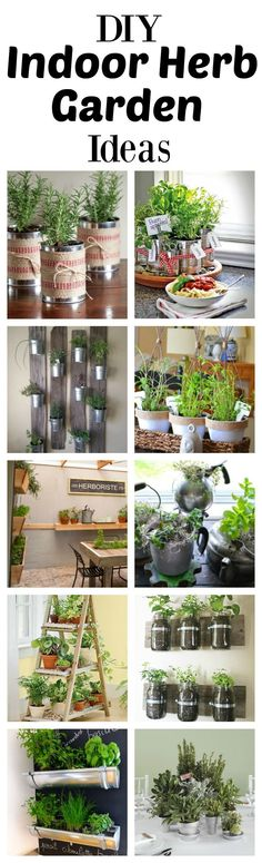 Several cool ideas. My fave is the reclaimed wood plants with mason jars. #herbgardendesign