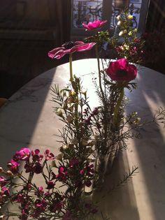 Fleurs, anemones, wax flower, vase d'avril