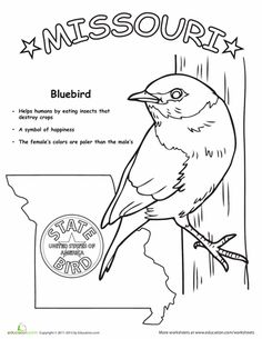 usaprintables state of missouri coloring pages missouri