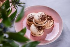 Macarons, Panna Cotta, Gluten Free, Snacks, Sweet, Ethnic Recipes, Food, France, Glutenfree