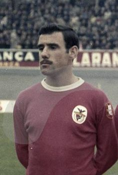 Luciano, Benfica