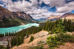 Peyto by sarahlyndsay  alberta banff banff national park canada lake long exposure mountains peyto lake sky summer trees ba