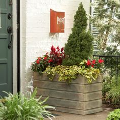 Add curb appeal to your front yard by planting a garden around your mailbox. Here are some ideas to help get you started. Front Door Landscaping, Landscaping Plants, Landscaping Ideas, Mailbox Garden, Mailbox Planter, Porch Plants, Potted Plants, Painted Branches, Fall Containers