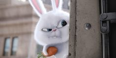 the secret life of pets snowball - Google Search