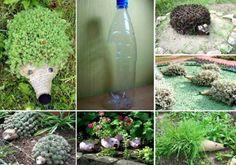 Avec une bouteille plastique préalablement découpée en son centre, et quelques végétaux que vous planterez à l'intérieur, vous réaliserez de jolis hérissons à placer au jardin..