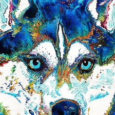 #huskies #dogs Colorful Husky Dog Art by Sharon Cummings