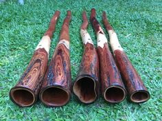 Didgeridoo, Gifts, Tools, Musica, Presents, Gifs, Favors
