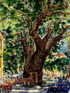 Platanos Tree, Plomari, Lesvos Greece Holiday Accommodation, Homeland, Athens, Anastasia, Watercolors, Greece, Relax, England, The Incredibles