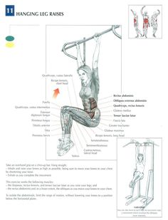 Hanging Leg Raises ♦ #health #fitness #exercises #diagrams #body #muscles #gym #bodybuilding #abs #abdomen #workout