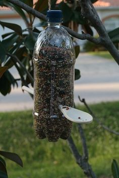 Soda Bottle Bird Feeder Craft - kids could add paint, windows, stickers, etc that suit their personality