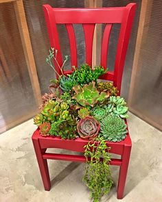 July DIY Star Shaped Planter w/ Succulents Succulent chair planterSucculent chair planter Succulent Planter Diy, Succulent Gardening, Diy Planters, Garden Planters, Container Gardening, Gardening Tips, Organic Gardening, Tall Planters, Planter Ideas