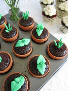 Sweet Sprout Cupcake Toppers ( 12 Sprouts & Terra-cotta pots, 2 Bunnies, 1…
