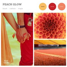 RudeColor_2016_Color Trends_Forecast_Free_Report_16