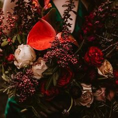 Bulb Flowers (@bulbflowers_ct) • Instagram photos and videos Bulb Flowers, Bouquets, Cool Photos, Christmas Wreaths, Photoshoot, Photo And Video, Holiday Decor, Videos, Amazing