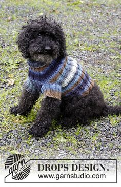 Paws & Stripes - Dog's knitted jumper with rib. Sizes XS - M. The piece is worked in DROPS Big Delight. - Free pattern by DROPS Design Knitted Dog Sweater Pattern, Knit Dog Sweater, Dog Sweaters, Drops Design, Knitting Patterns Free, Hand Knitting, Costume Chien, Magazine Drops, Dog Fleece