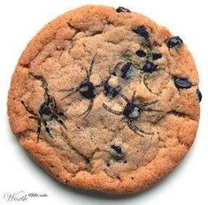 """Here's a super easy and spooky Halloween treat - spider chip cookies! Simply bake a sheet of chocolate chip cookies and immediately after removing them from the oven, use a toothpick to drag out """"legs"""" from the chocolate chips. Your guests will love them!"""