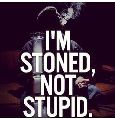 Buy top quality Cannabis Seeds from Seedsman. Our range of marijuana seeds is one of the largest online, with more than 3000 varieties of Cannabis Seeds. Stoner Quotes, Stoner Art, Weed Humor, Life Quotes, Funny Quotes, 420 Quotes, Stoner Meme, Herbs, Backgrounds
