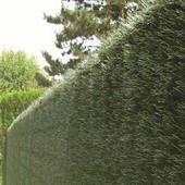Kunsthecke Hagmatte Sichtschutzmatte PVC Sichtschutz kunststoff Taxus, dauerhaft, abwaschbar, witterungsbeständig, 95% sichtdicht blickdicht.